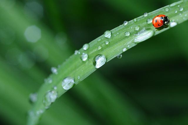 梅雨 薪ストーブ