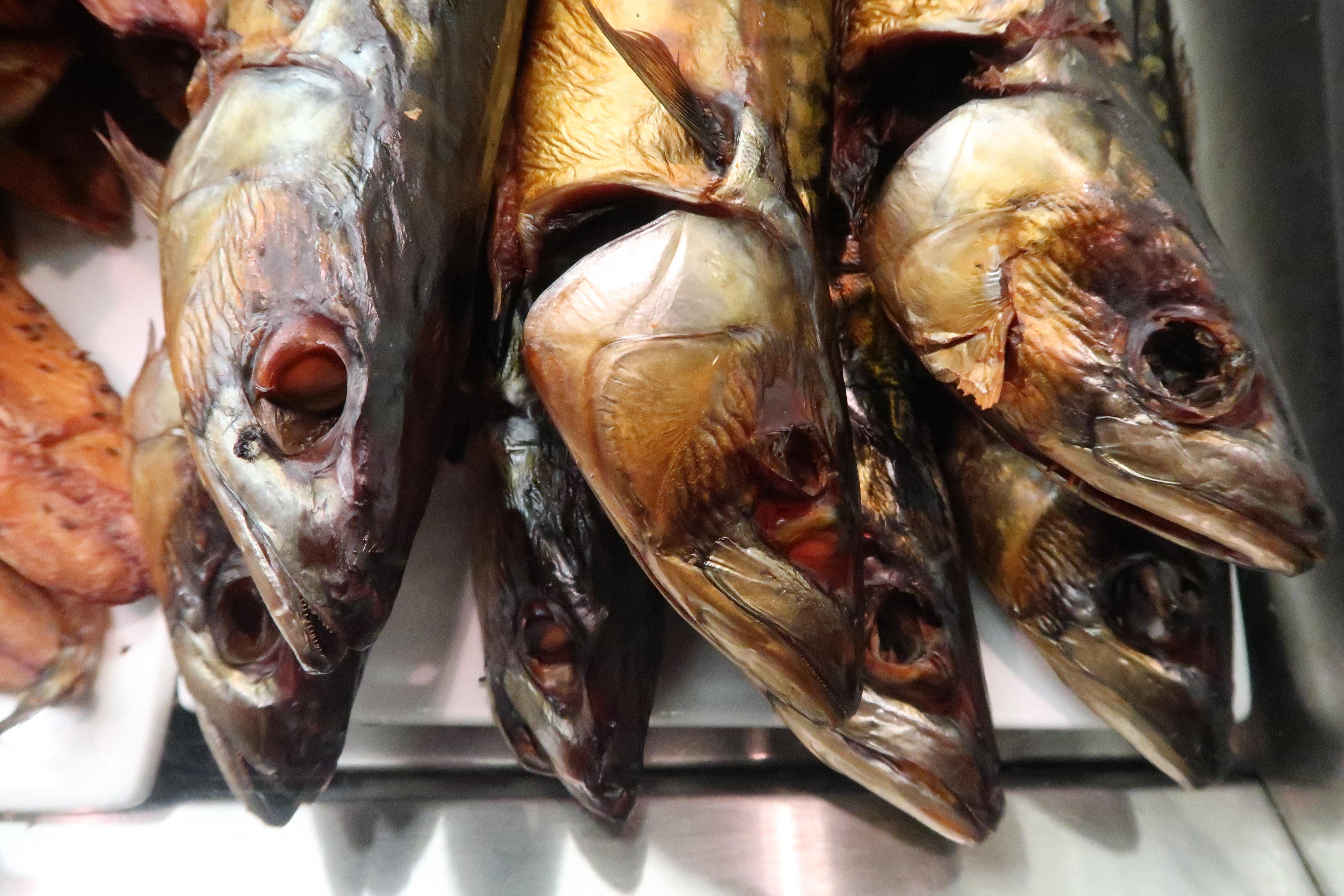 ダッチオーブン 薪ストーブ 燻製 川魚